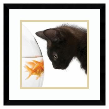 Amanti Art Penny for Your Thoughts Cat Framed Print