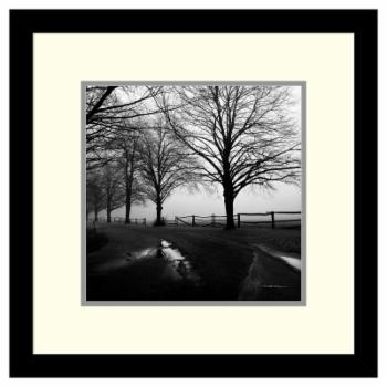 Amanti Art Framed Print - After the Rain by Harold Silverman