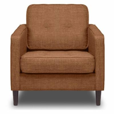 Dwell Home Accent Chairs Hayneedle