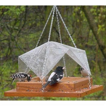 Songbird Essentials 12 x 12 in. Super Tray with Cover Feeder