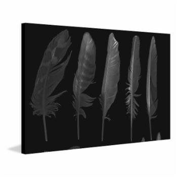 Marmont Hill Feathers in the Dark Canvas Painting Print