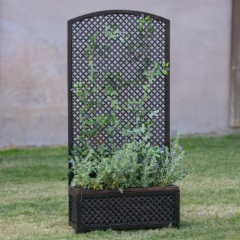 Coral Coast Guthrie Metal Decorative Planter with Trellis