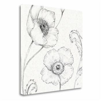 Tangletown Fine Art Blossom Sketches I Canvas Wall Art By Daphne Brissonnet