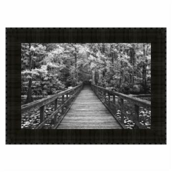 Tangletown Fine Art A Walk Into Tranquility Framed Wall Art by Mike Jones