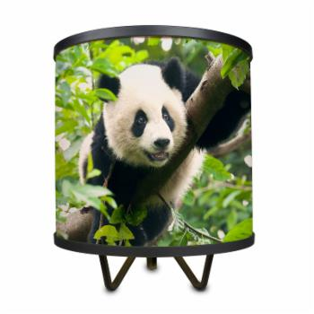 ArtLight Giant Panda Tripod Table Lamp