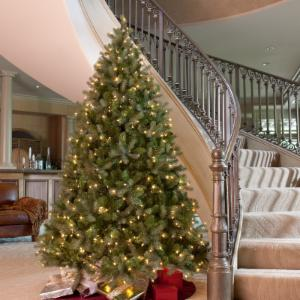 Christmas Trees Clearance Sale | Hayneedle