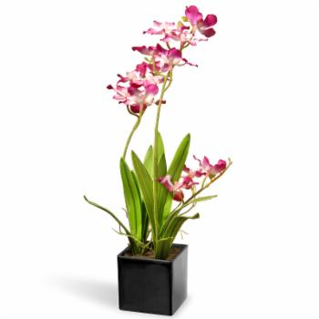 National Tree Company Ceramic Potted Orchid Silk Flower