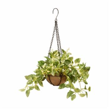 National Tree Company Artificial Pothos Plant Hanging Basket