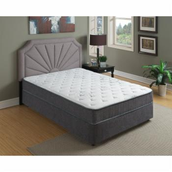 Primo International Rejuvinate 9 in. Plush Top Pocket Coil Mattress