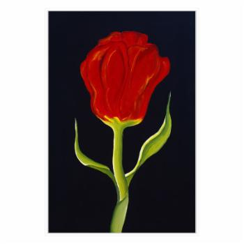 PTM Images Red Tulip Framed Canvas Wall Art