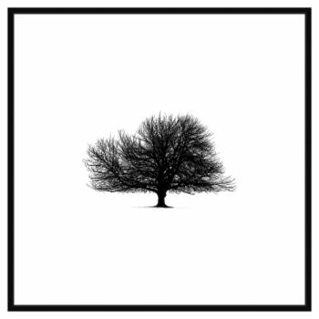 PTM Images Black Tree Decorative Canvas Wall Art