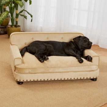 Enchanted Home Pet Library Pet Sofa