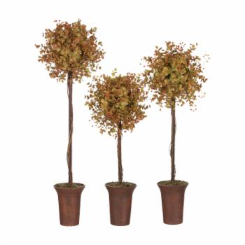 Sullivans Autumn Eucalyptus Topiary Silk Trees - Set of 3