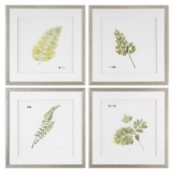 HumbleNest Darby Farmhouse / Cottage Watercolor Leaf Study Prints - Set of 4