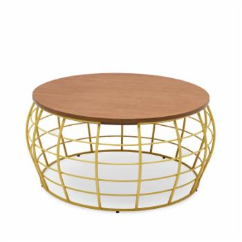 Wire Coffee Table by Drew Barrymore Flower Home